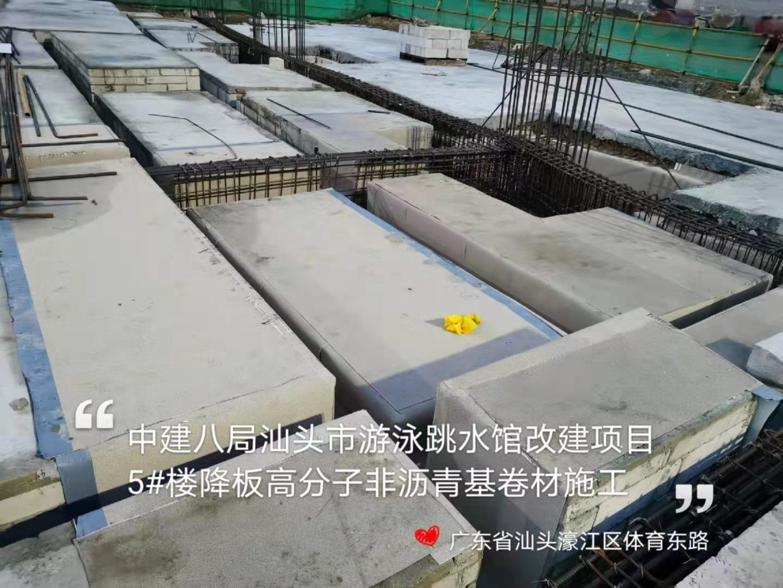 汕头游泳跳水馆高分子卷材施工